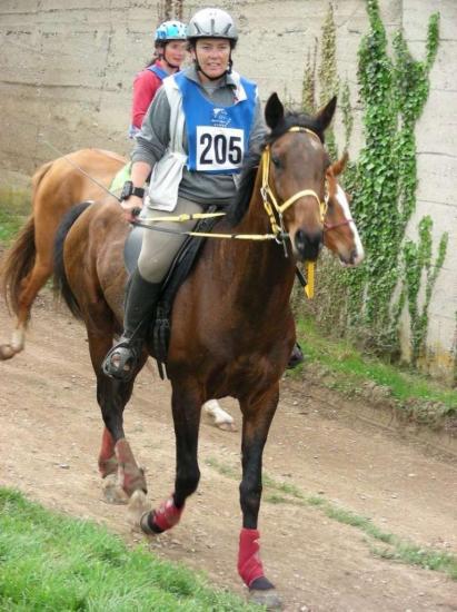 Endurance courtenay 2011
